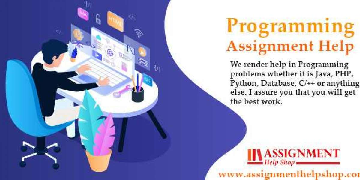 Programming Assignment Help with Fast and Easy Services